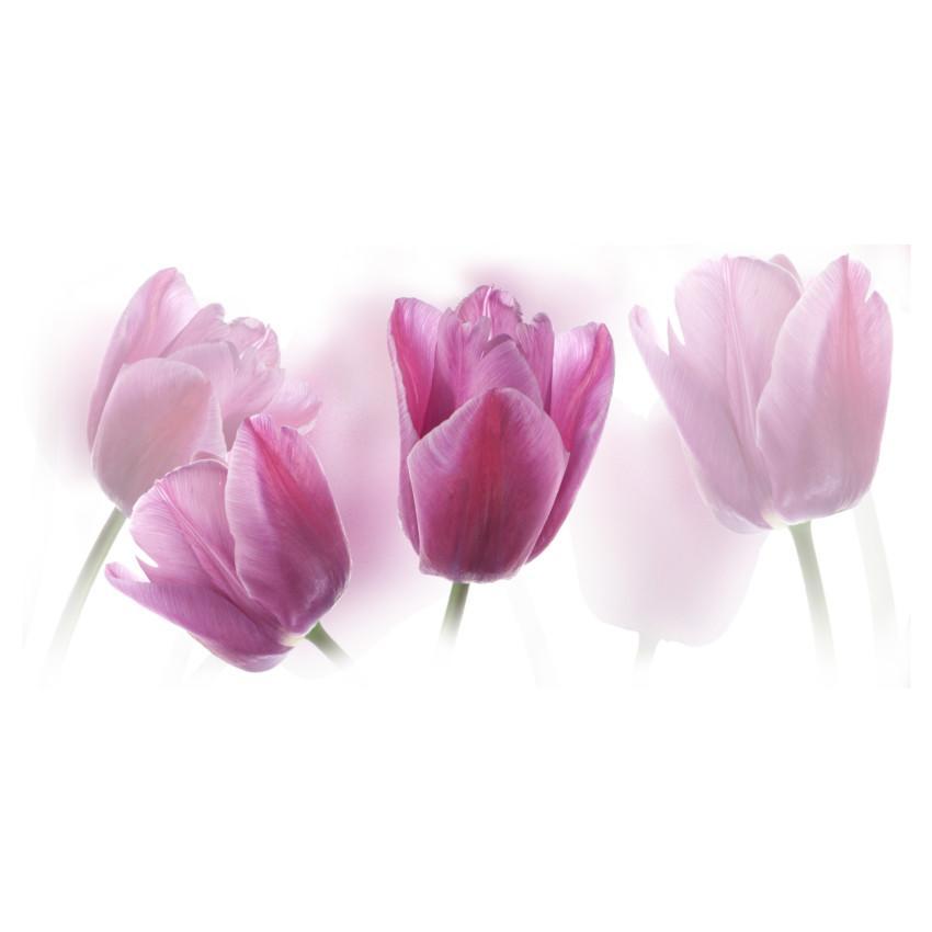 Dekor tulipány centro 20/50