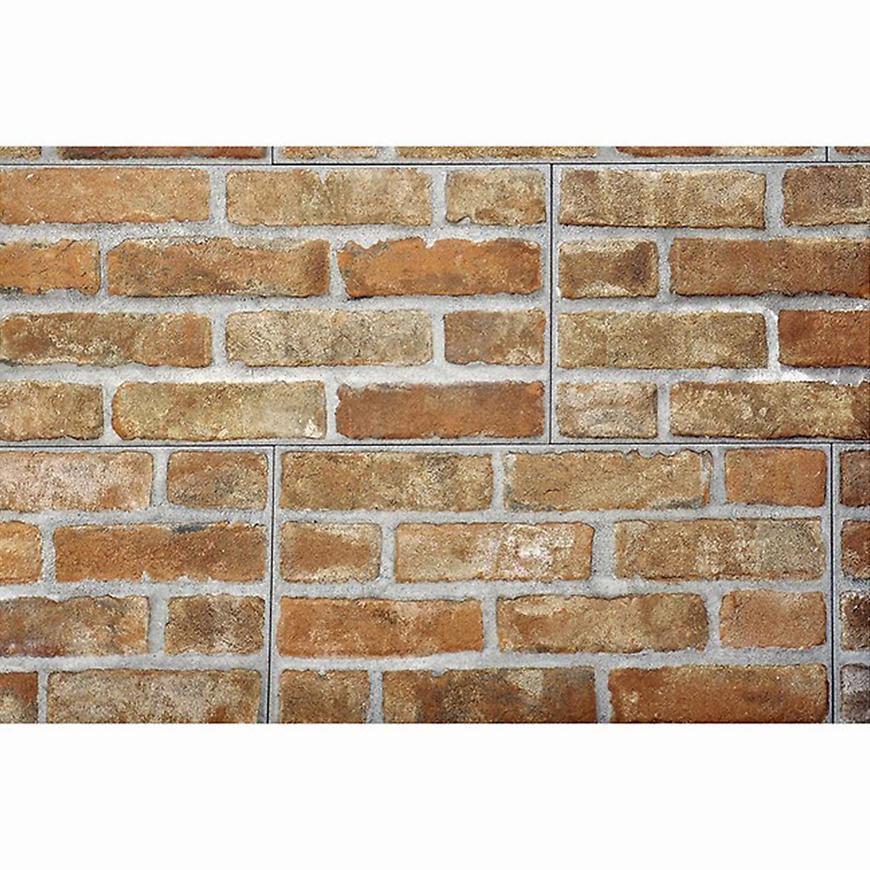 Nástěnný obklad mrazuvzdorný Brick red 31/62