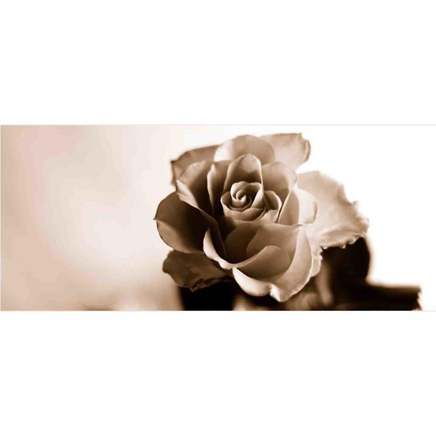 Dekor skleněný - růže 1 20/50