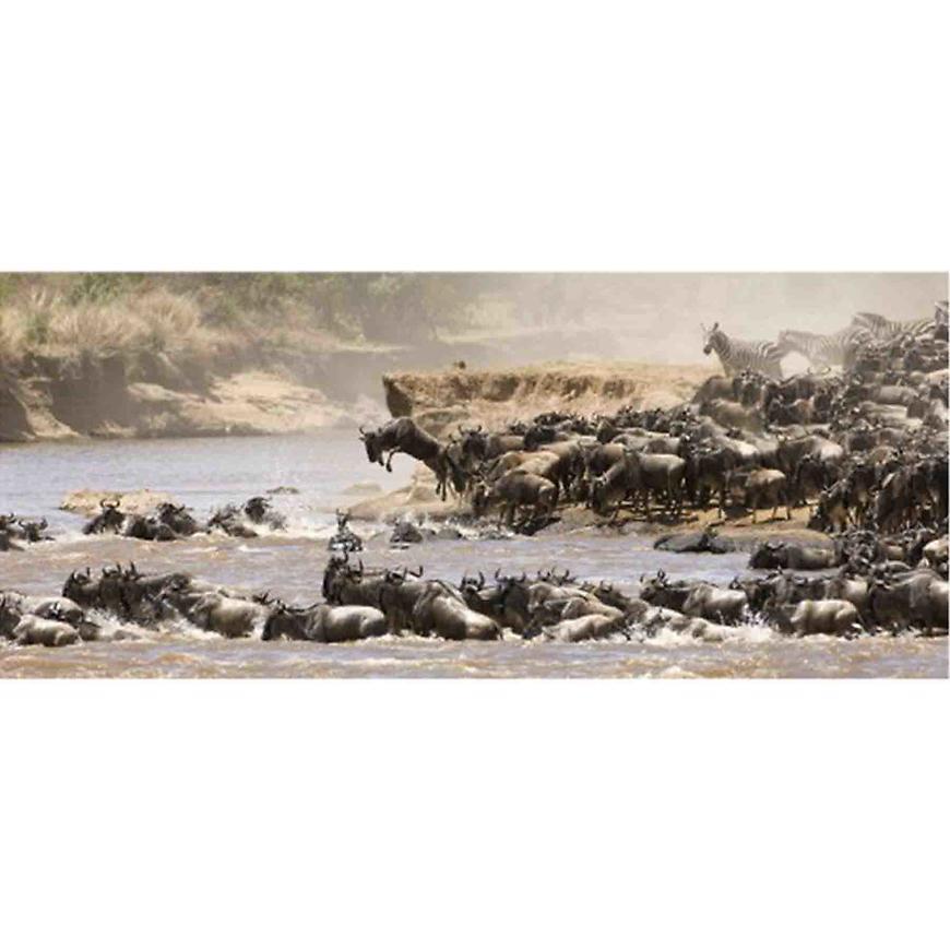 Dekor skleněný - antilopy 20/50