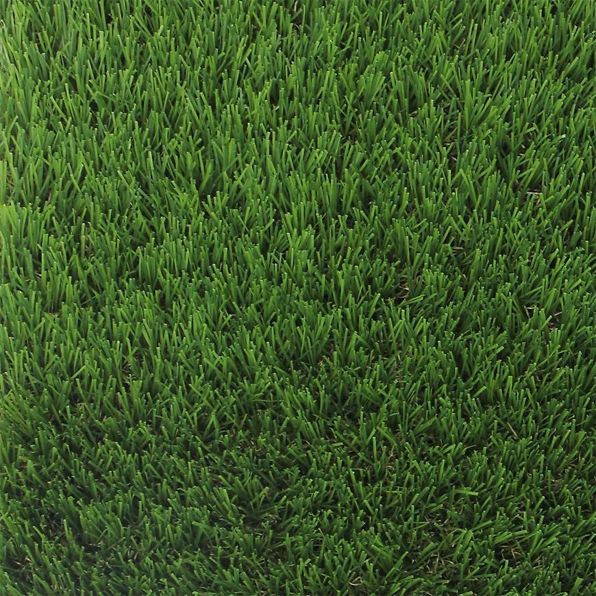 Trávni koberec Royal 100x200