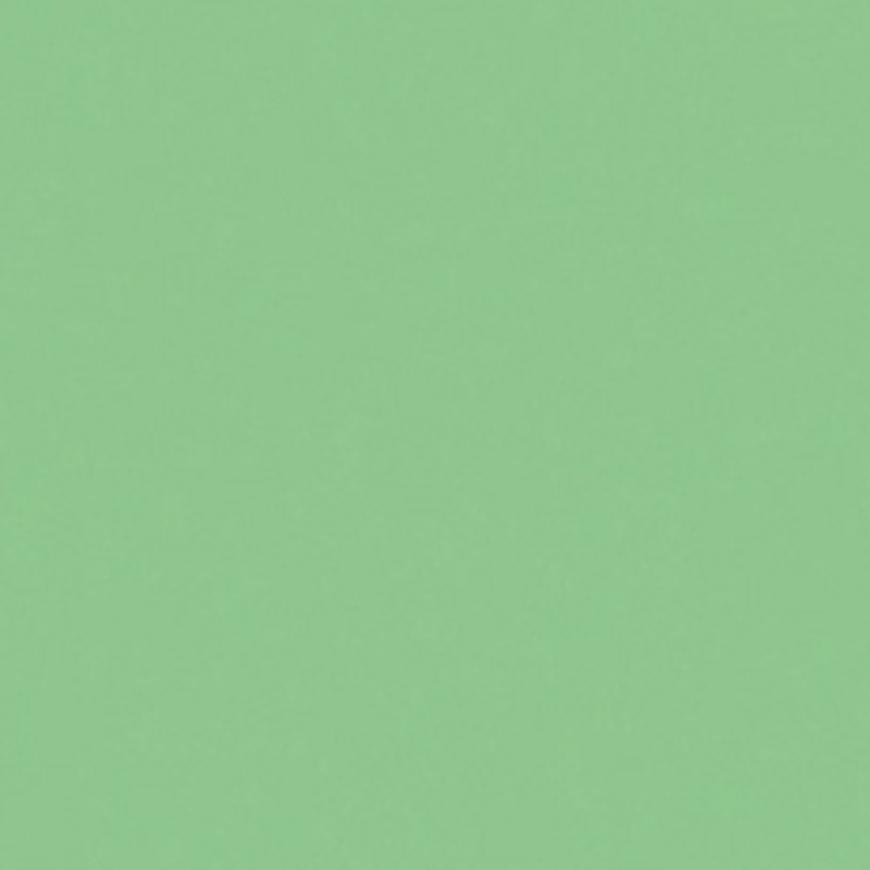Skleněný panel 60/60 Mono Mint